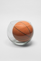 668_goldfish-bowl--basketball.jpg
